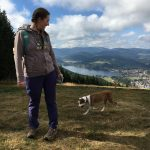 Schwarzwaldertorte